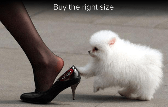 buy-the-right-size