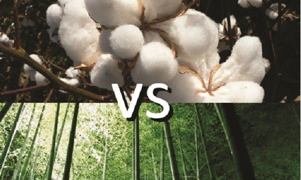 bamboo-vs-cotton