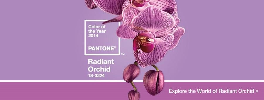 radiant orchid pantone color 2014