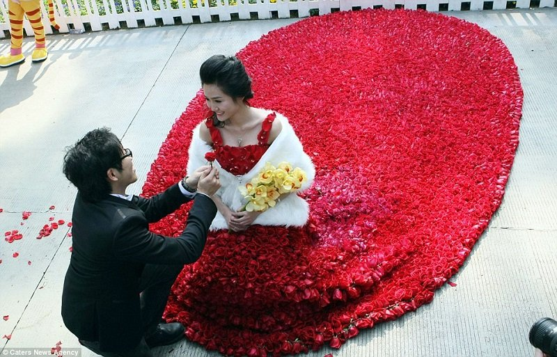 rose-day-red-rose-meaning