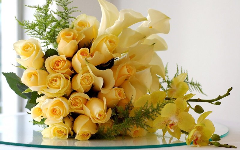 rose-day-yellow-roses