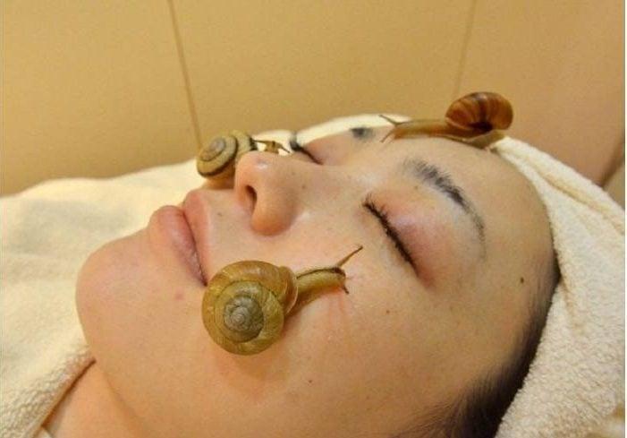 Snail masque