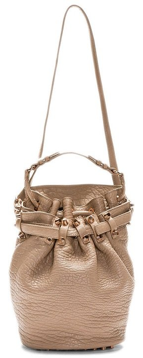 Alexander-Wang-Brown-Diego-Lambskin-Bucket-Bag