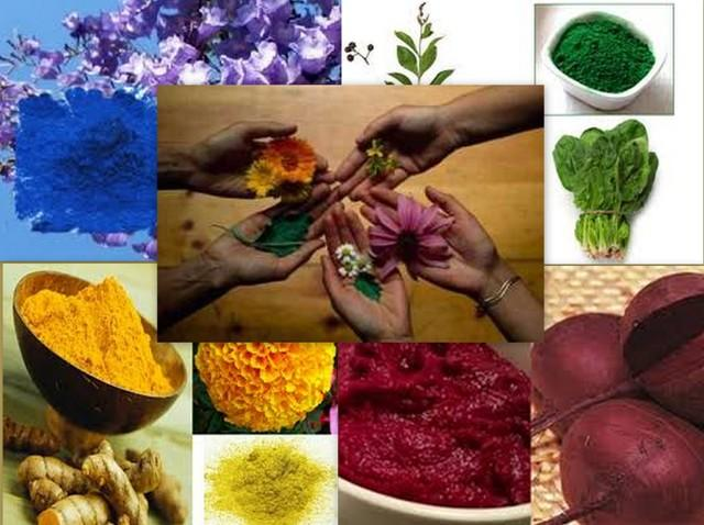 organic-holi-colors