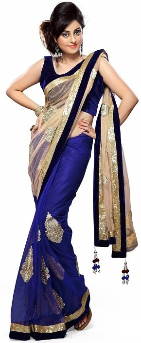 Bollywood style blue net saree with cream pallu and heavy embroidery work border