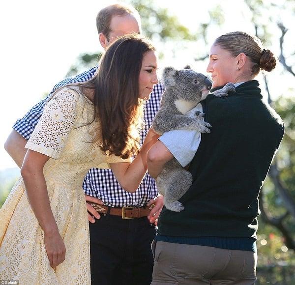 kate-middleton-royal-tour-koala