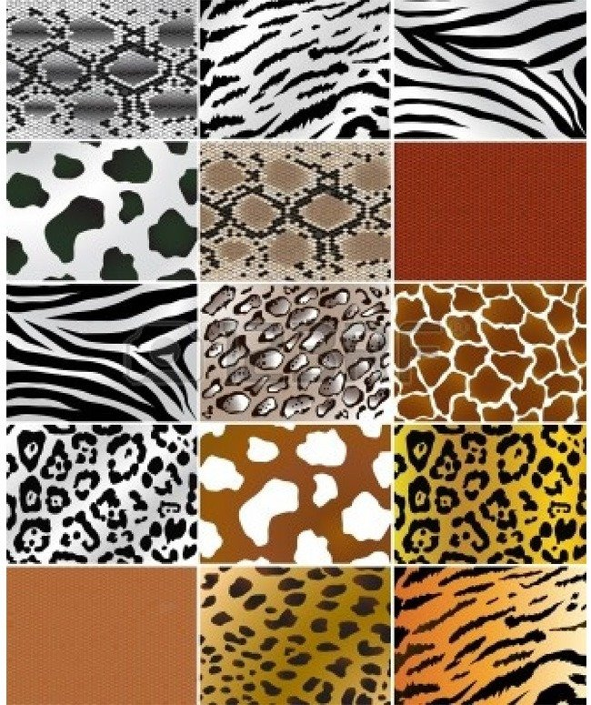 Animal Prints From Retro Till Date A Never Fading