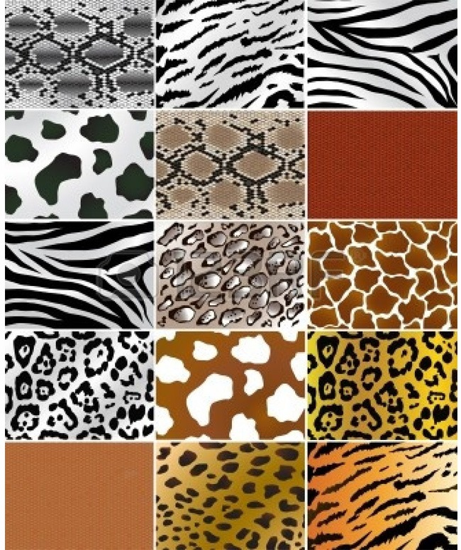 Animal Prints – From Retro till Date, A Never-Fading ...