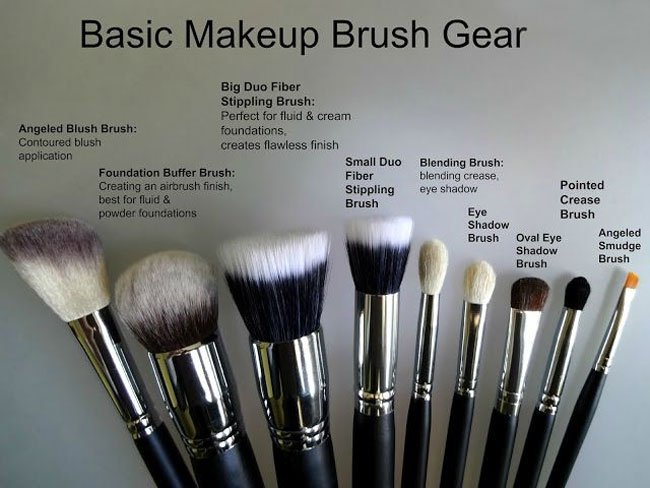 Find the right make up brush gear