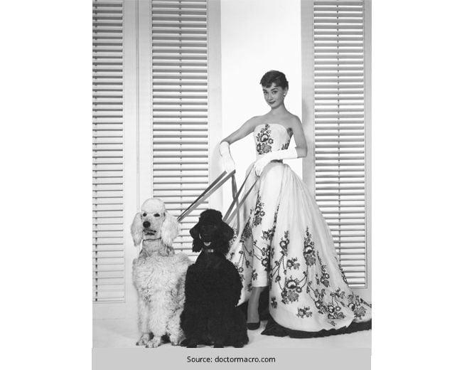 Audery-Hepburn---The-Fashion-Icon