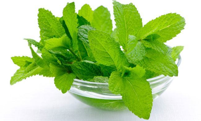 Mint Leaves for ear pain