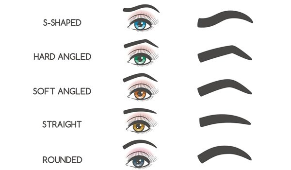 eyebrow shapes. fashionlady fashionlady. different types of eyebrows eyebrow shapes e