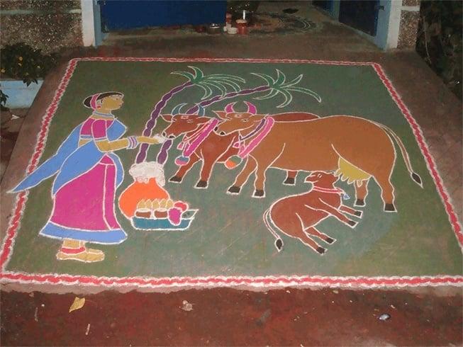 Sankranthi festival rangoli