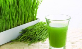Wheatgrass For Beauty