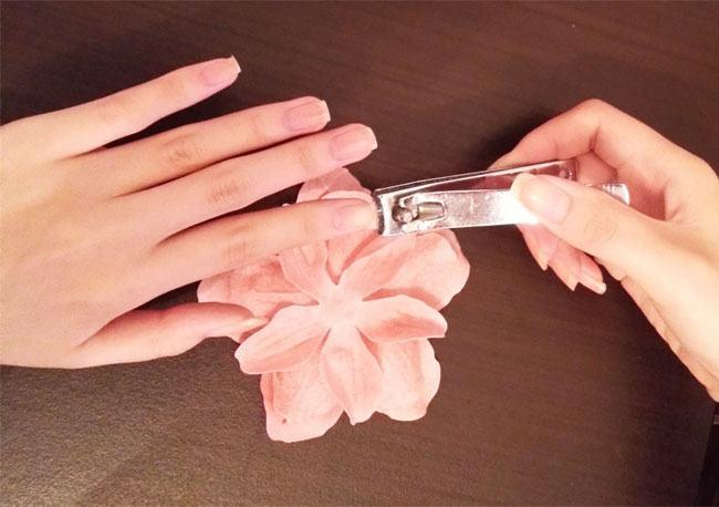 Skin Care Tips for Safe Holi
