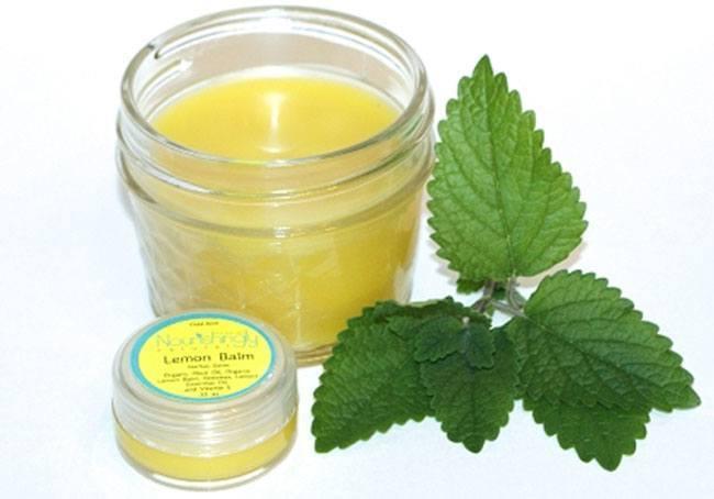 Lemon balm tea for cold sores
