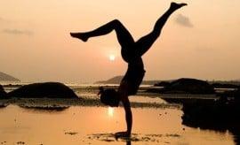 thai lyngby prani wellness