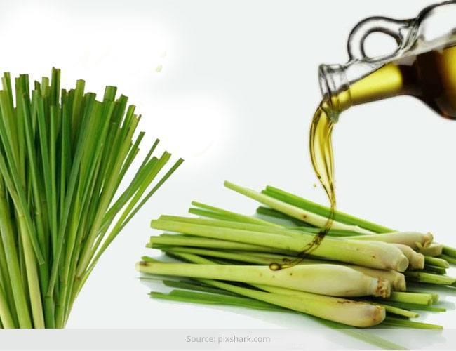 Benefits of Lemongrass Oil on Skin