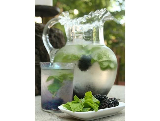 Blackberry Mint