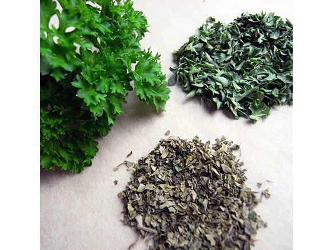 Chew parsley