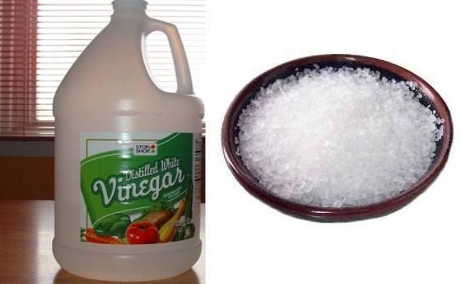 Salt and White Vinegar