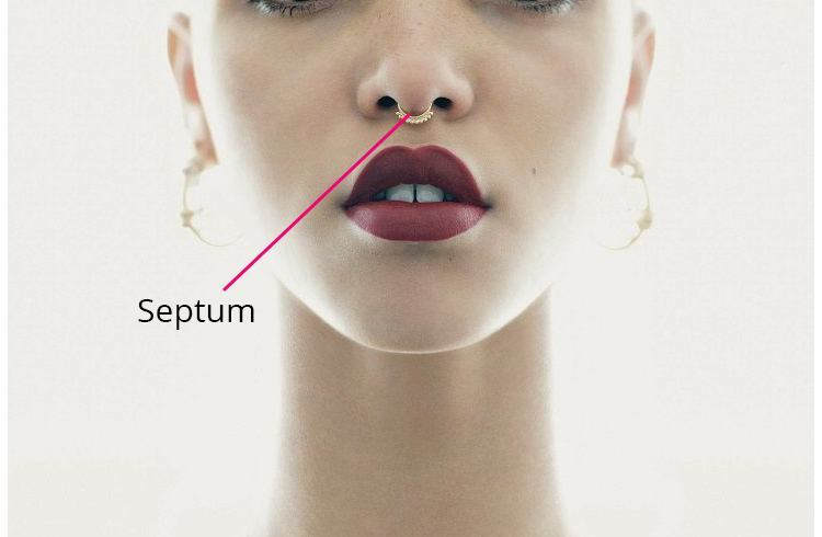 Septum Nose Cartilage Piercing