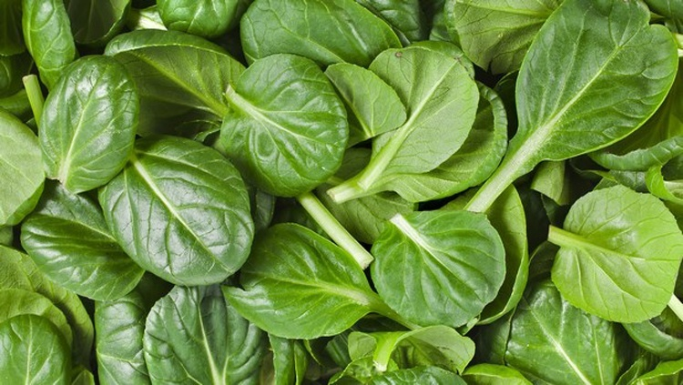 How To Use Spinach For Hair Growth