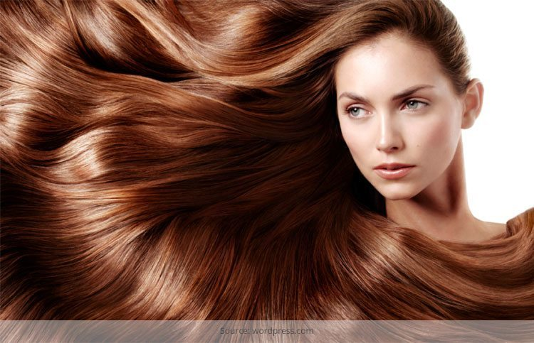 Tips for Oily Hair Control