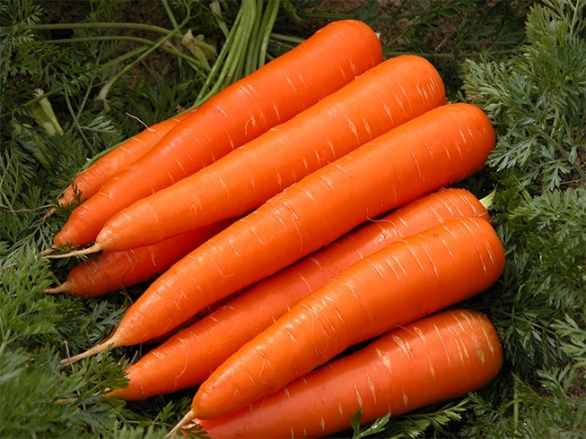 Carrots for curly hair