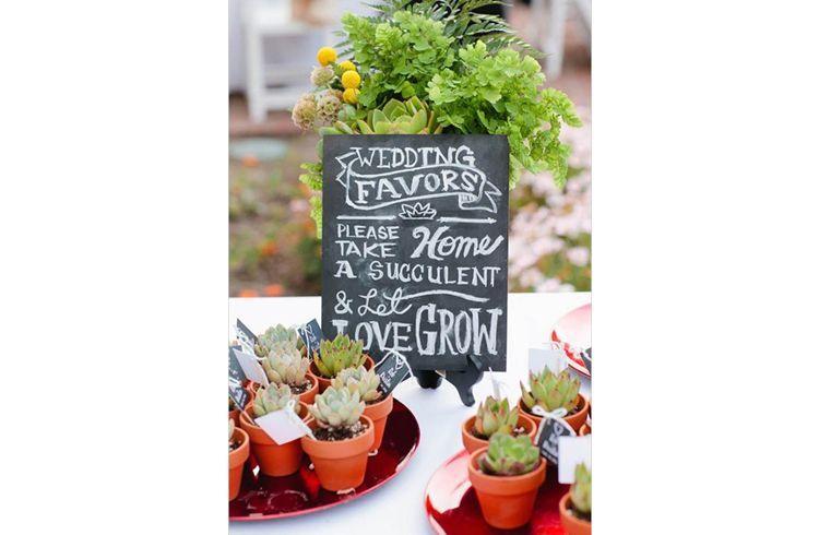 Eco-friendly wedding gifts