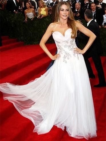 Hollywood Celebrity Sofia Vergara