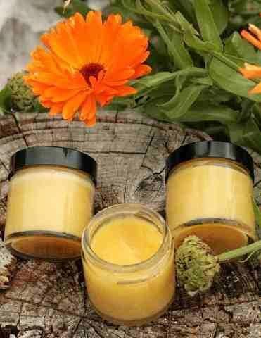 Marigold Health Benefits