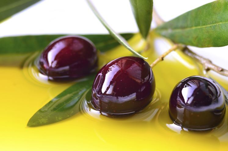 about Greek olive oil