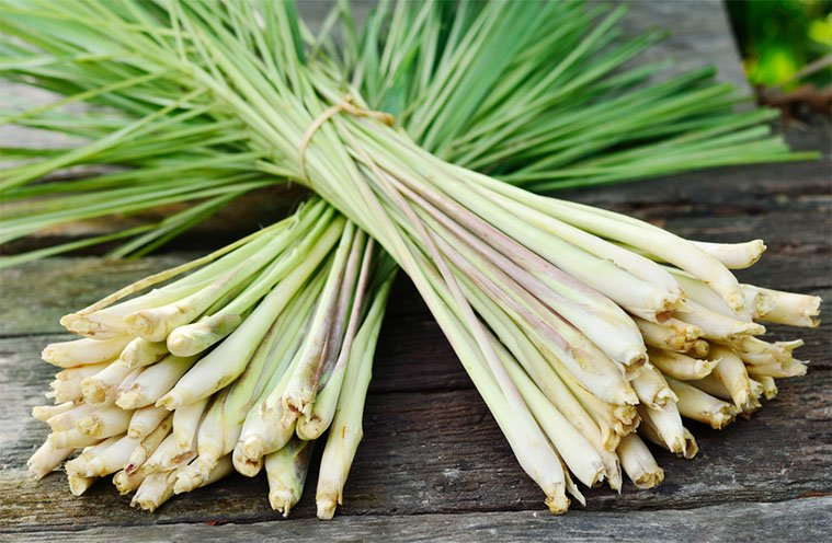 Lemongrass Uses