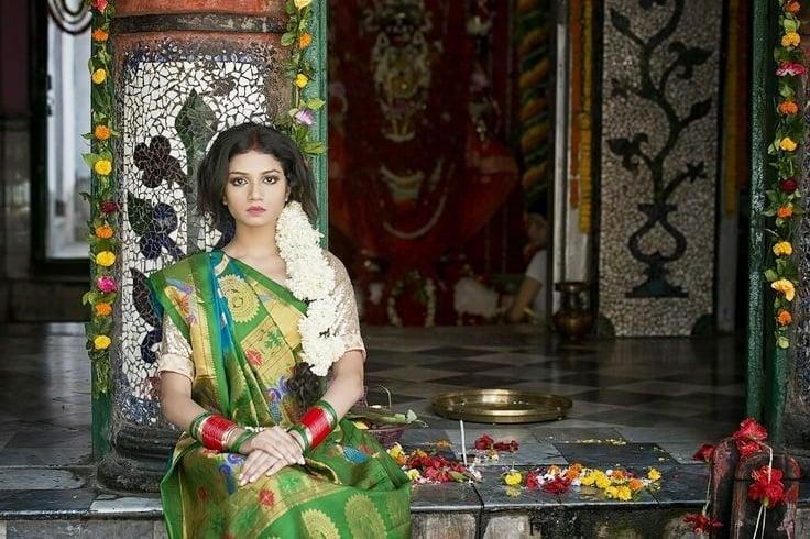 Paithani sari designs