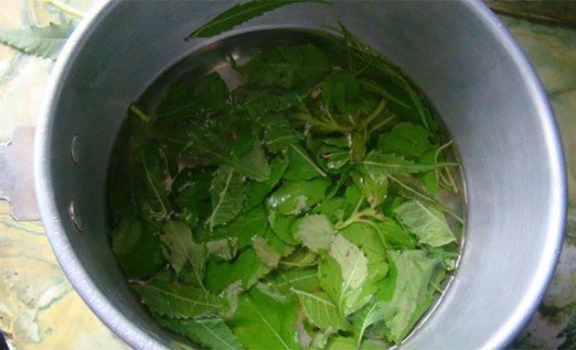 tulsi face pack For Toning Skin
