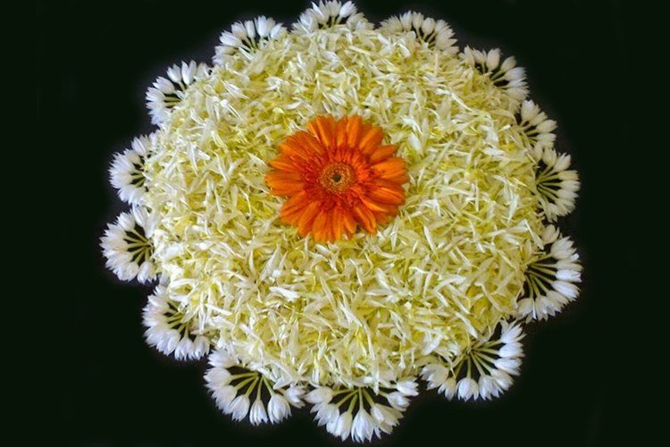 latest flower rangoli designs  that will steal your heart away, Beautiful flower