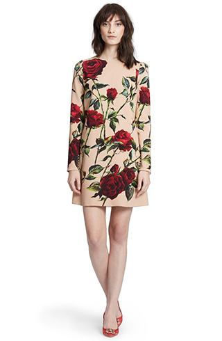 Dolce and Gabbana rose print dress