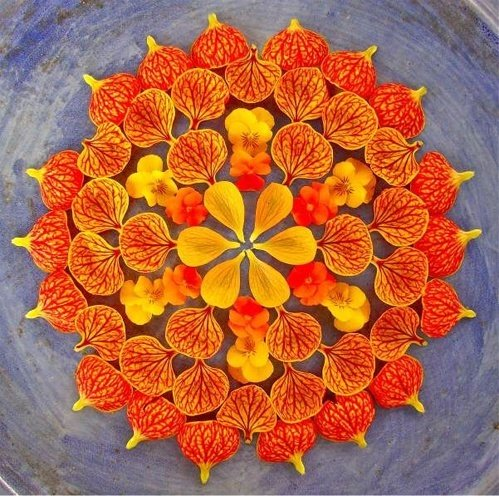 flower rangoli competitions