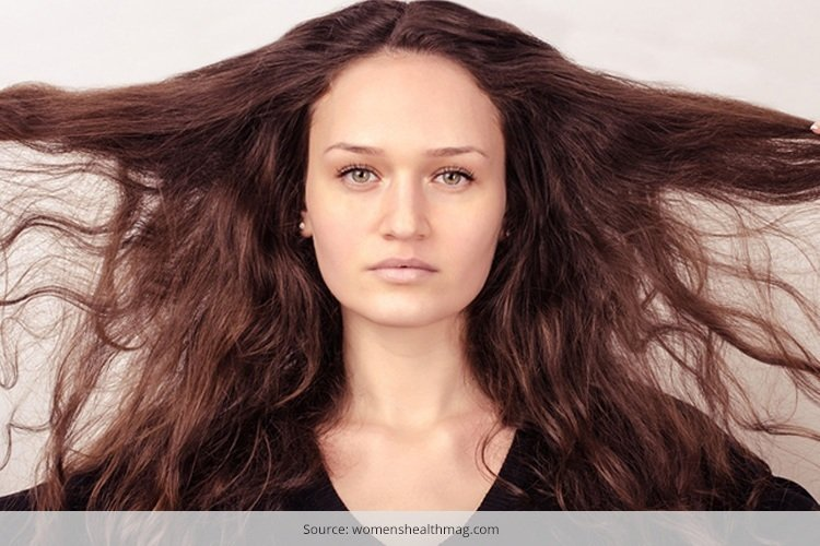 dry brittle hair treatment