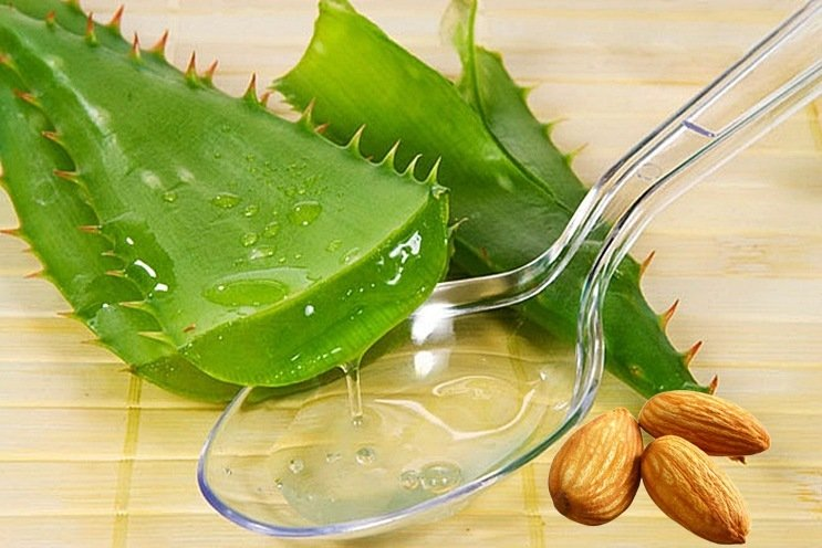 oily skin advantages using aloe vera