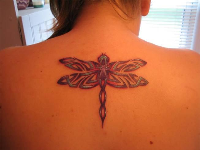 Tribal Dragon fly Pattern Tattoo