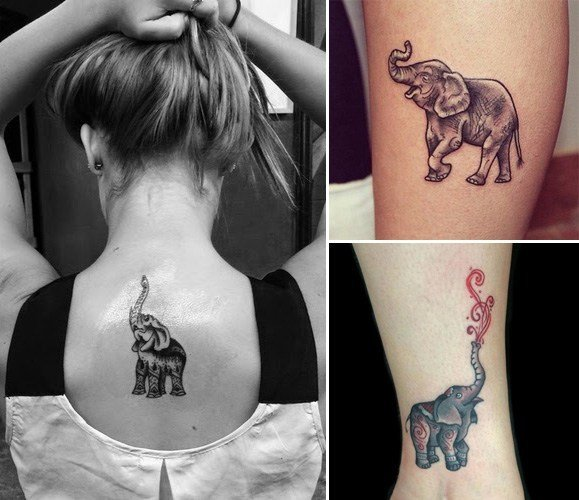 Trunk Up Elephant Tattoos