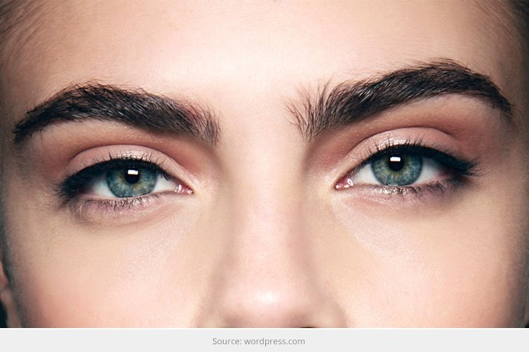 Thick Eyebrows Trend