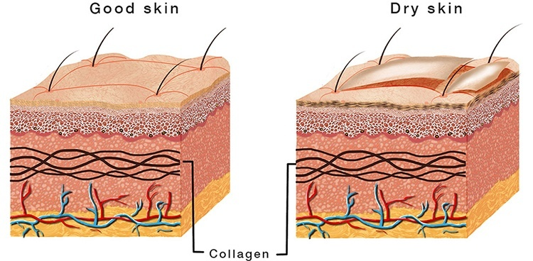 Can Glycerin Be Used For Dry Skin