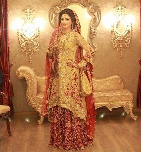 Pakistani Designer Saira Rizwan Collection