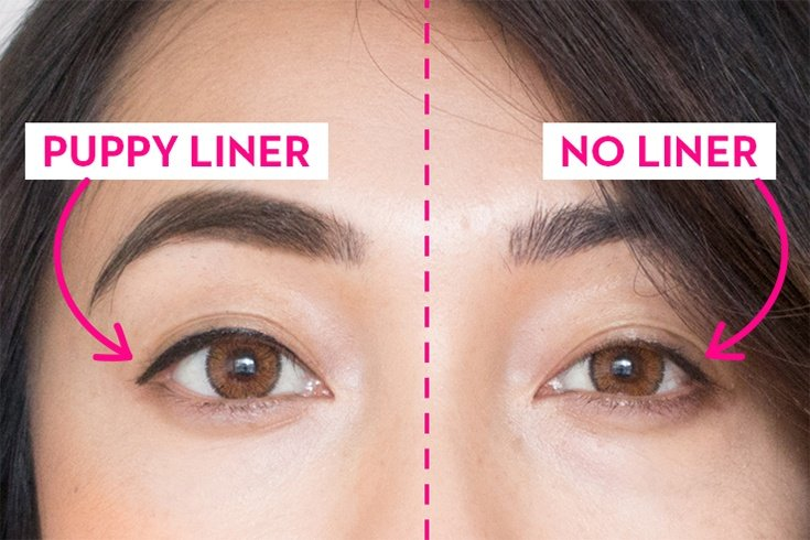 Tips To Nail The Puppy Dog Eye Makeup