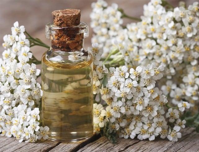 Natural Beauty Secrets Around The World