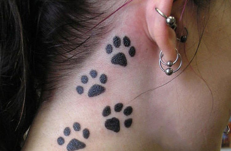 Pet Tattoos