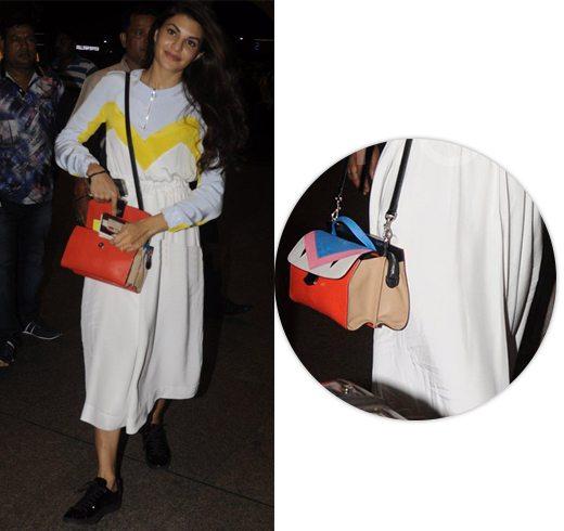 Jacqueline Fernandez Hand Bags